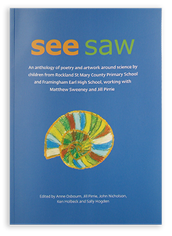 SEE SAW book image